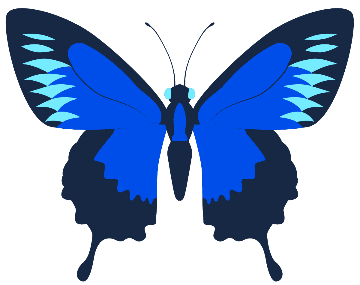 Butterfly Vision